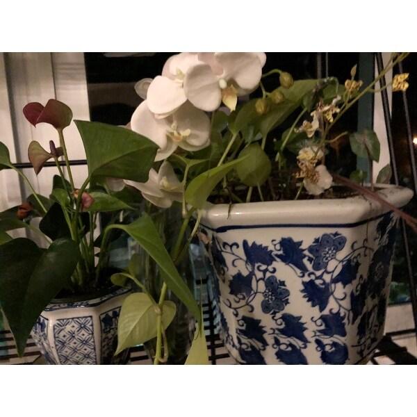 Shop handmade porcelain blue and white flower pot planter china shop handmade porcelain blue and white flower pot planter china free shipping today overstock 5675223 mightylinksfo