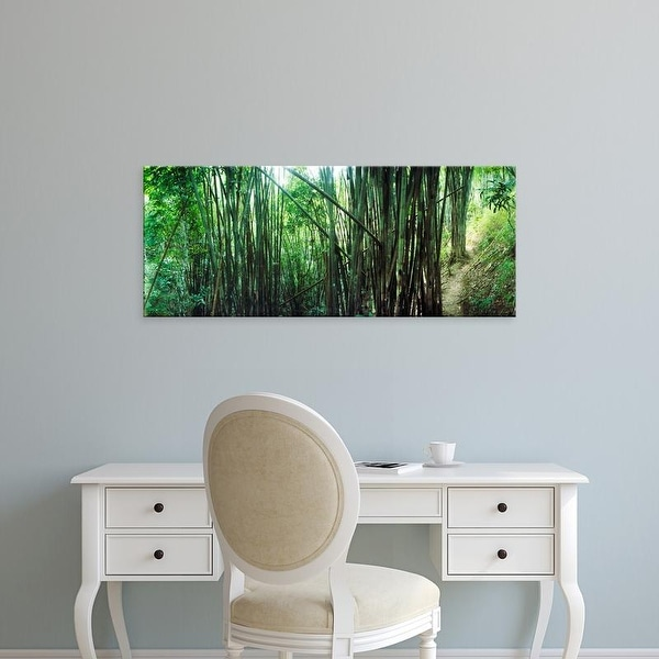 Easy Art Prints Panoramic Images's 'Bamboo forest, Chiang Mai, Thailand' Premium Canvas Art