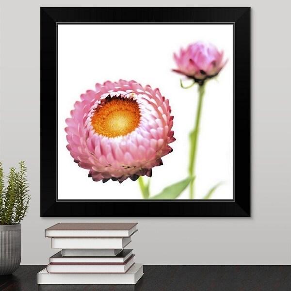 """""""Pink Strawflowers, Japan"""" Black Framed Print"""