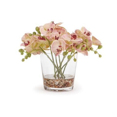 "Phalaenopsis Arrangement In Vase 8.5"""
