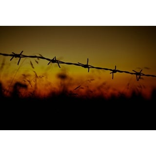 Barbed Wire Photograph Wall Art Canvas|https://ak1.ostkcdn.com/images/products/is/images/direct/87fcc6b7654d36b0c89ea2549a747bf4e2b8a5ea/Barbed-Wire-Photograph-Wall-Art-Canvas.jpg?_ostk_perf_=percv&impolicy=medium