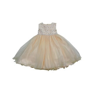 Baby Girls Champagne Glitter Floral Accent Organza Flower Girl Dress