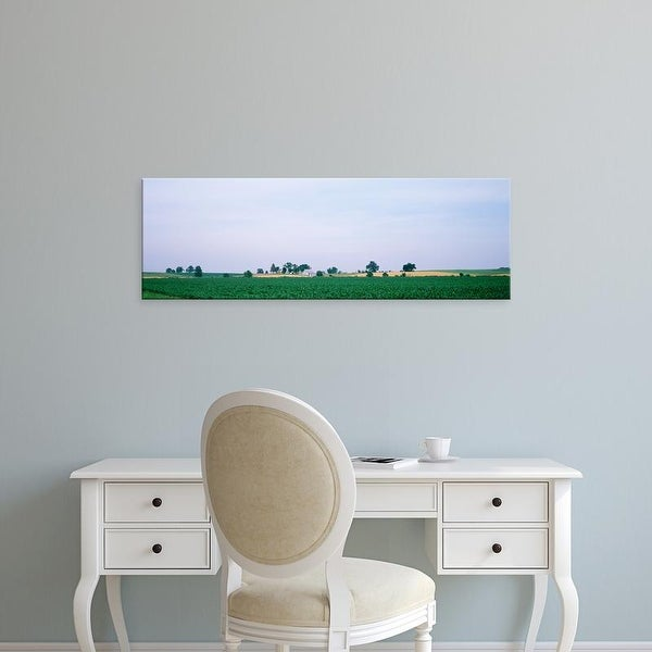 Easy Art Prints Panoramic Images's 'Farm & corn field Marion Co IL USA' Premium Canvas Art
