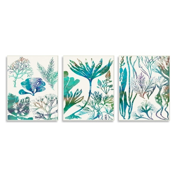 Stupell Industries Collage of Blue Sea Plants Ocean Floor Design Wood Wall Art, 3pc, each 10 x 15 - Multi-Color. Opens flyout.