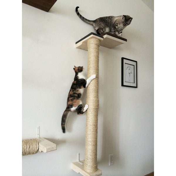 Shop Cat Climbing Sisal Pole 4 Foot Tall Handcrafted
