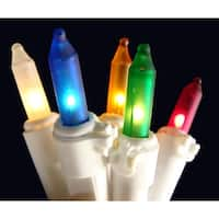 Set of 50 Frosted Multi Color Mini Christmas Lights - White Wire