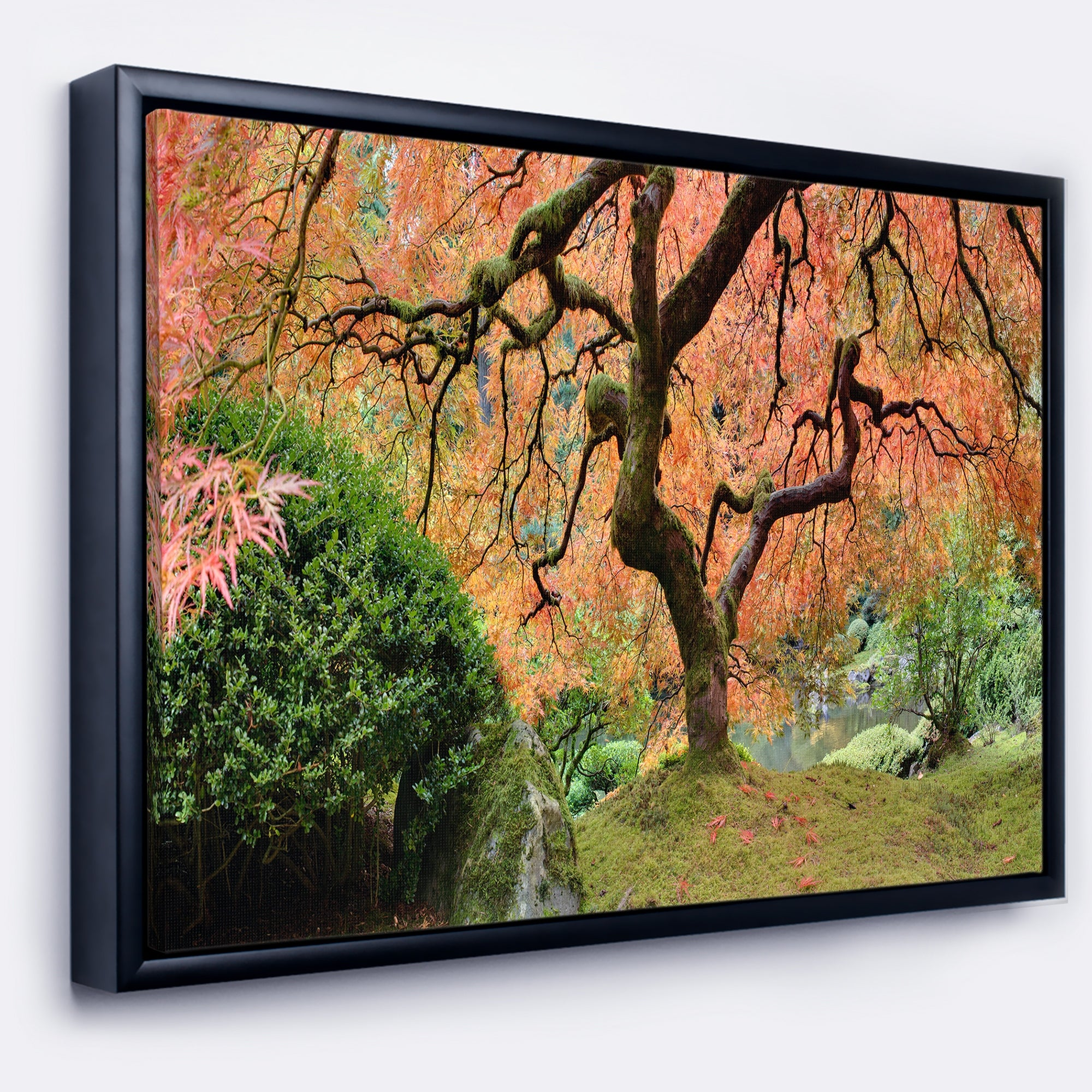 Designart Old Japanese Maple Tree Landscape Photography Framed Canvas Art Print Overstock 18951698
