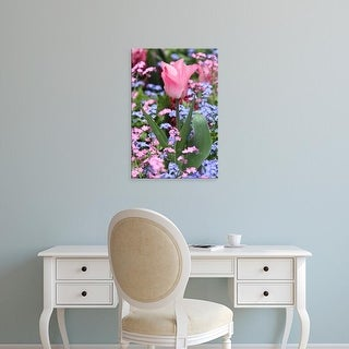 Easy Art Prints William Sutton's 'A Tulip At Luxembourg Gardens' Premium Canvas Art