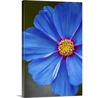 """""""Blue flower"""" Canvas Wall Art"""