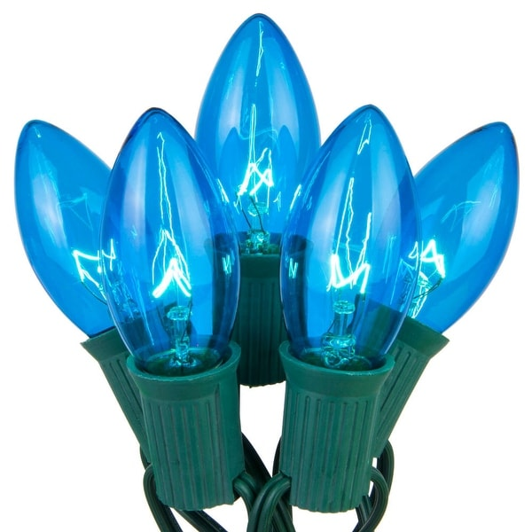 Wintergreen Lighting 67249 25 C9 7W Holiday Bulbs on Green Wire - BLue - N/A