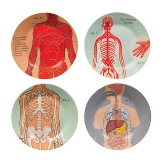 """Illustrated Anatomical Kitchenware Collection - Round Dinner Plates - 7.5"""""""