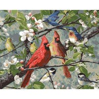 "Paint By Number Kit 16""X20""-Songbirds"