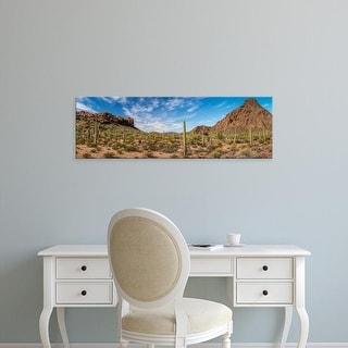 Easy Art Prints Panoramic Image 'Cactus plants in desert, Organ Pipe Cactus National Monument, Arizona' Canvas Art