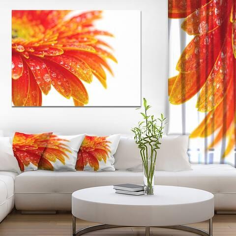 Designart 'Orange Gerbera with Raindrops' Extra Large Floral Canvas Art