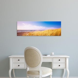 Easy Art Prints Panoramic Images's 'Dry tall grass on the beach, Point Reyes National Seashore, California' Canvas Art