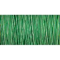 Foliage Green - Natural Cotton Thread Variegated 876Yd