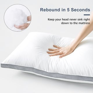 Link to Cotton Gusseted Pillows (Set of 2) Similar Items in Pillows