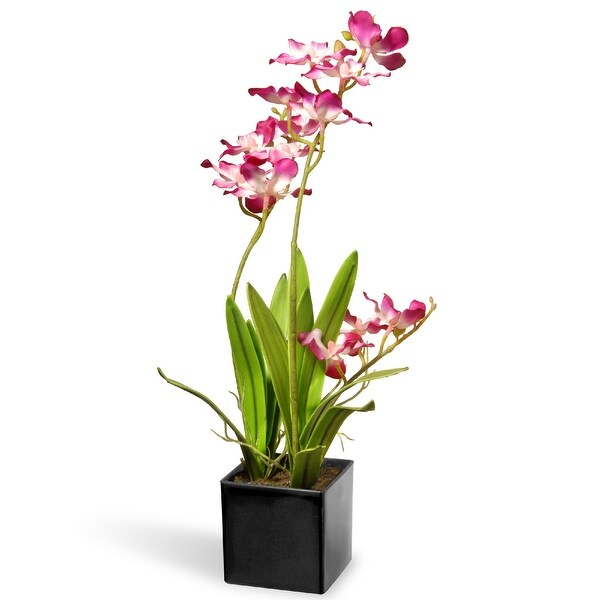 """16"""" Potted Purple Orchid Flowers - N/A"""