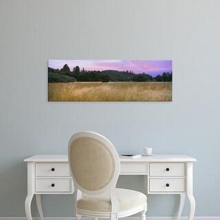 Easy Art Prints Panoramic Images's 'Sunset, Quail Hollow Ranch County Park, Felton, Santa Cruz, California' Canvas Art