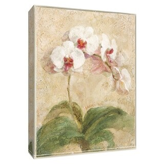 """PTM Images 9-154606  PTM Canvas Collection 10"""" x 8"""" - """"Dreamy Orchids I"""" Giclee Orchids Art Print on Canvas"""
