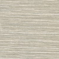 Brewster WD3087 Keisling Wheat Faux Grasscloth Wallpaper - N/A
