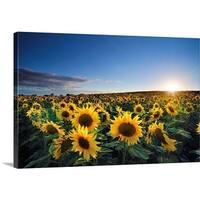 Premium Thick-Wrap Canvas entitled Sun setting over sunflower field. - Multi-color