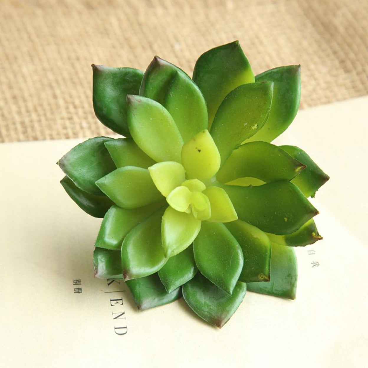 Artificial Succulents Plant Garden Miniature Fake Cactus DIY Home Floral Decor