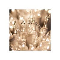 """Wintergreen Lighting 15200 33.7' Long Indoor Standard 100 Mini Light Holiday Light Strand with 4"""" Spacing and White Wire"""