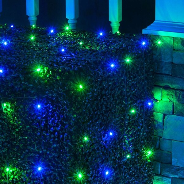 Wintergreen Lighting 72477 100 Bulb 4Ft x 6 Ft LED Decorative Holiday Net Light - Blue/Green - N/A