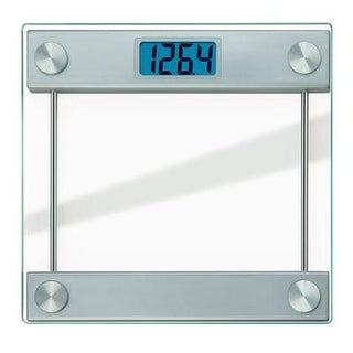Taylor 7519 Electronic Glass Bath Scale