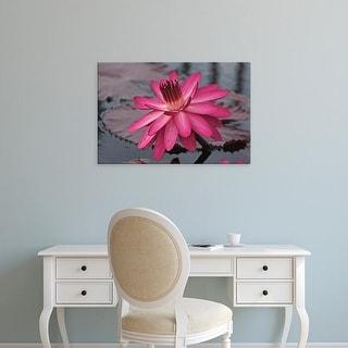 Easy Art Prints Connie Bransilver's 'Naples Botanical Garden' Premium Canvas Art