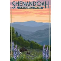 Shenandoah VA Bear and Cubs with Flower LP Artwork (Art Print - Multiple Sizes)