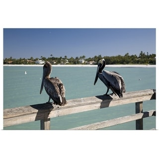 """Two pelicans perched atop fence railing of Naples Pier, Gulf of Mexico"" Poster Print"