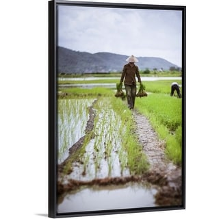 """Farmer at work in rice paddy, North Vietnam"" Black Float Frame Canvas Art"