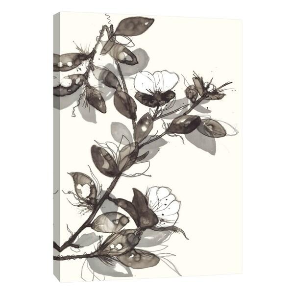 "PTM Images 9-108530 PTM Canvas Collection 10"" x 8"" - ""Transparent Flora 1"" Giclee Flowers Art Print on Canvas"