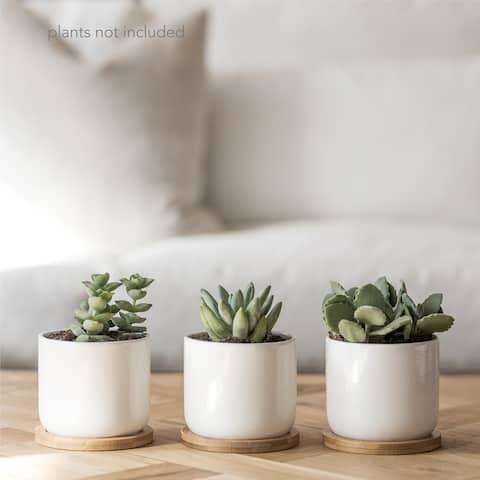 """Ceramic Planters - 3.5"""" x 4"""""""