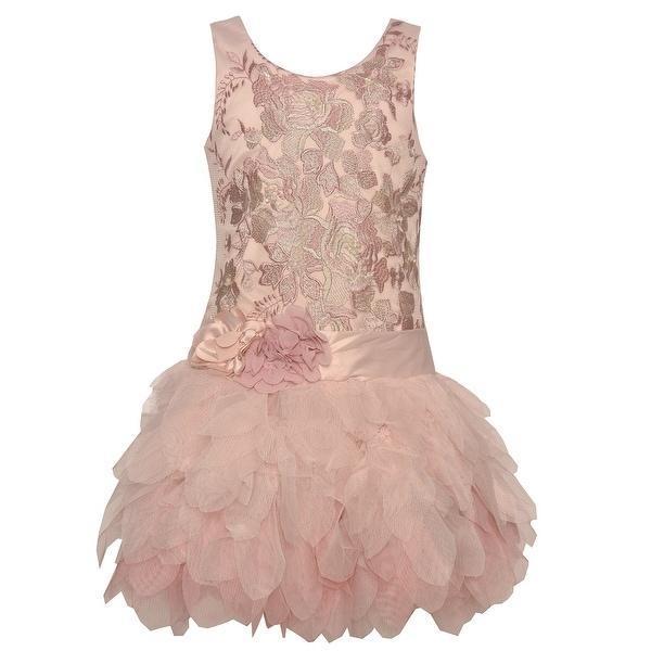 Shop Biscotti Little Girls Pink Embroidered Cascade Mesh Ruffle