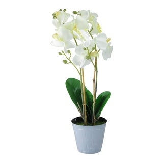 """16.5"""" White and Green Potted Artificial Phalaenopsis Orchid Flower Plant - N/A"""