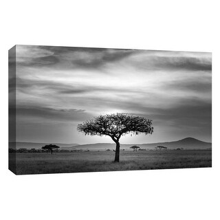 """PTM Images 9-126724  PTM Canvas Collection 10"""" x 8"""" - """"Gray Sunset"""" Giclee Safari Art Print on Canvas"""