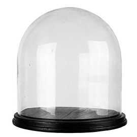 """CYS® Glass Cloche Dome Display with Black Wood Base, 13.5"""" (1 PC)"""