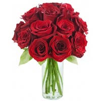 KaBloom: The Classic Red Rose Bouquet of 12 Fresh Cut Red Roses (Farm-Fresh, Long-Stem) with Vase