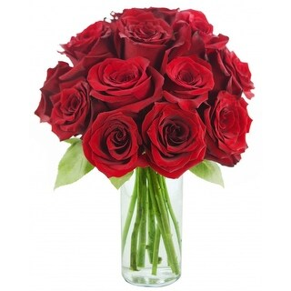KaBloom Mother's Day Special: The Classic Red Rose Bouquet of 12 Fresh Cut Red Roses (Farm-Fresh, Long-Stem) with Vase