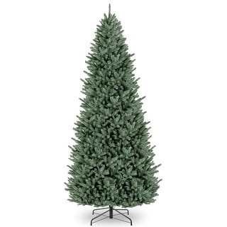 Link to 12 ft. Natural Fraser Slim Unlit Fir Tree - 12ft. Similar Items in Christmas Greenery