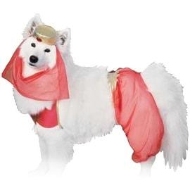 Rubies Harem Pet Costume, Large