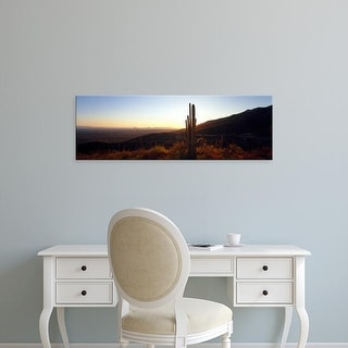 Easy Art Prints Panoramic Images's 'Cactus plant in a desert at sunset, Tucson, Arizona, USA' Premium Canvas Art