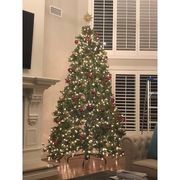 Shop 10 Foot Dunhill Fir Tree With 1200 Clear Lights Free Shipping