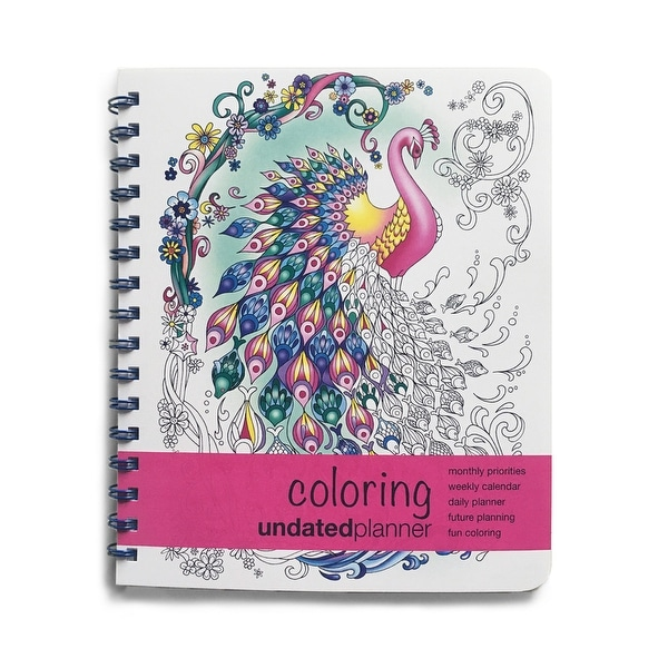 Shop Action Publishing Undated Coloring Day Planner - Free ...