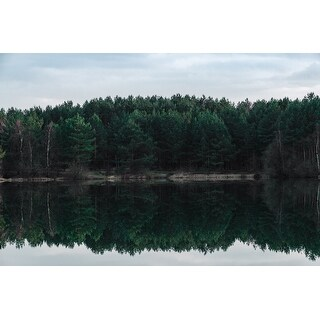 Tree Reflection Photograph Wall Art Canvas (More options available)