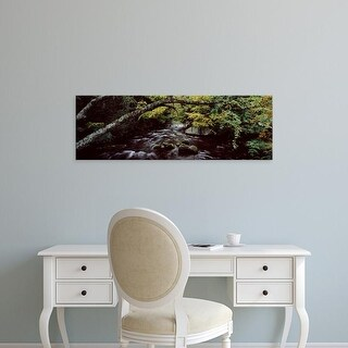 Easy Art Prints Panoramic Image 'Stream flowing through a forest, Adirondack Mountains, New York State' Canvas Art