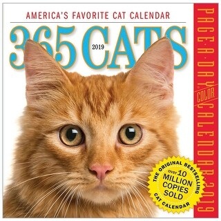 Workman Publishing 365 Cats Page-A-Day Calendar 2019 - Daily Photos, Facts and Quotes - MultiColor